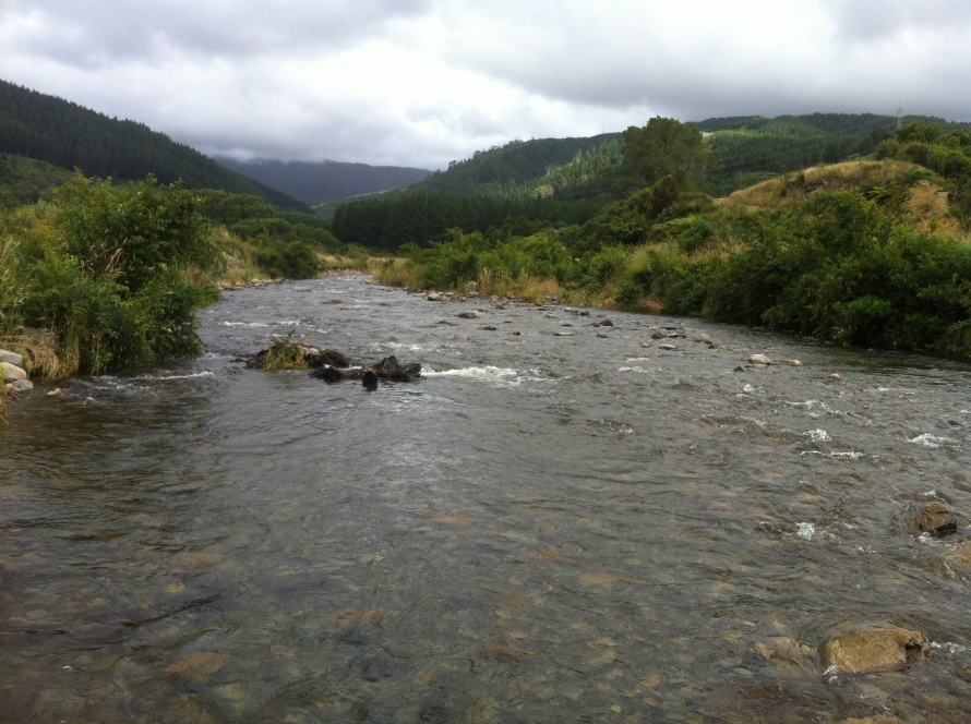 The Waikawa Stream, capable of rising over a meter in half an hour.
