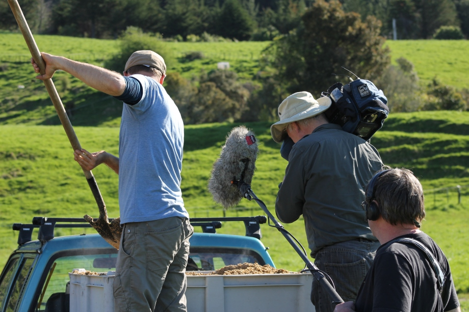 Feeding pigs brewers grain whilst standing on the back of a ute with a camera crew.