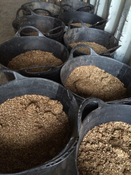 Twice a day, every day I dish out the food into these feed buckets. Each one holds 5kg of feed.